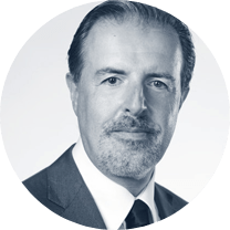Grapevine World ICO Wolfgang Schubert