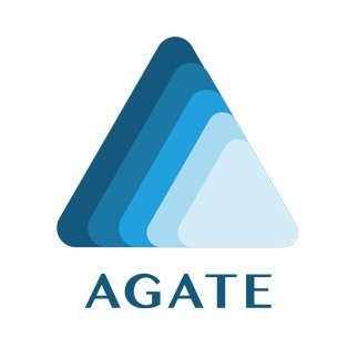 Agate ico review & rating