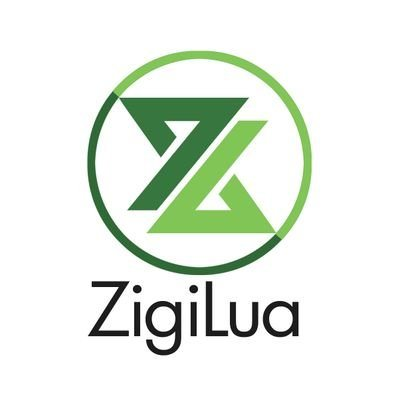 Zigilua ico review & rating