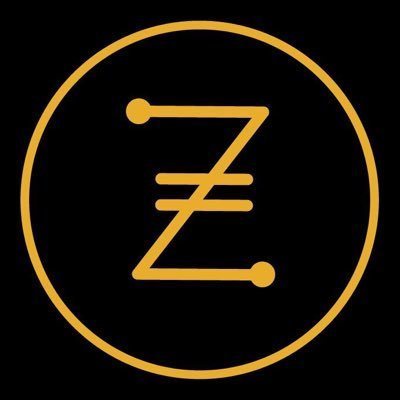 iZiCoin ico review & rating