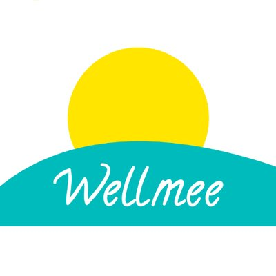 Wellmee ico review & rating