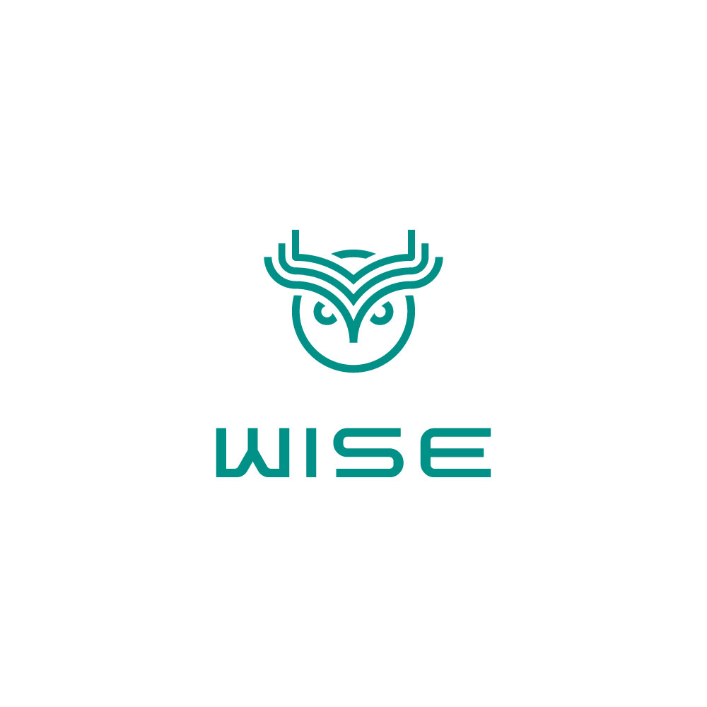 Wise token ico review & rating