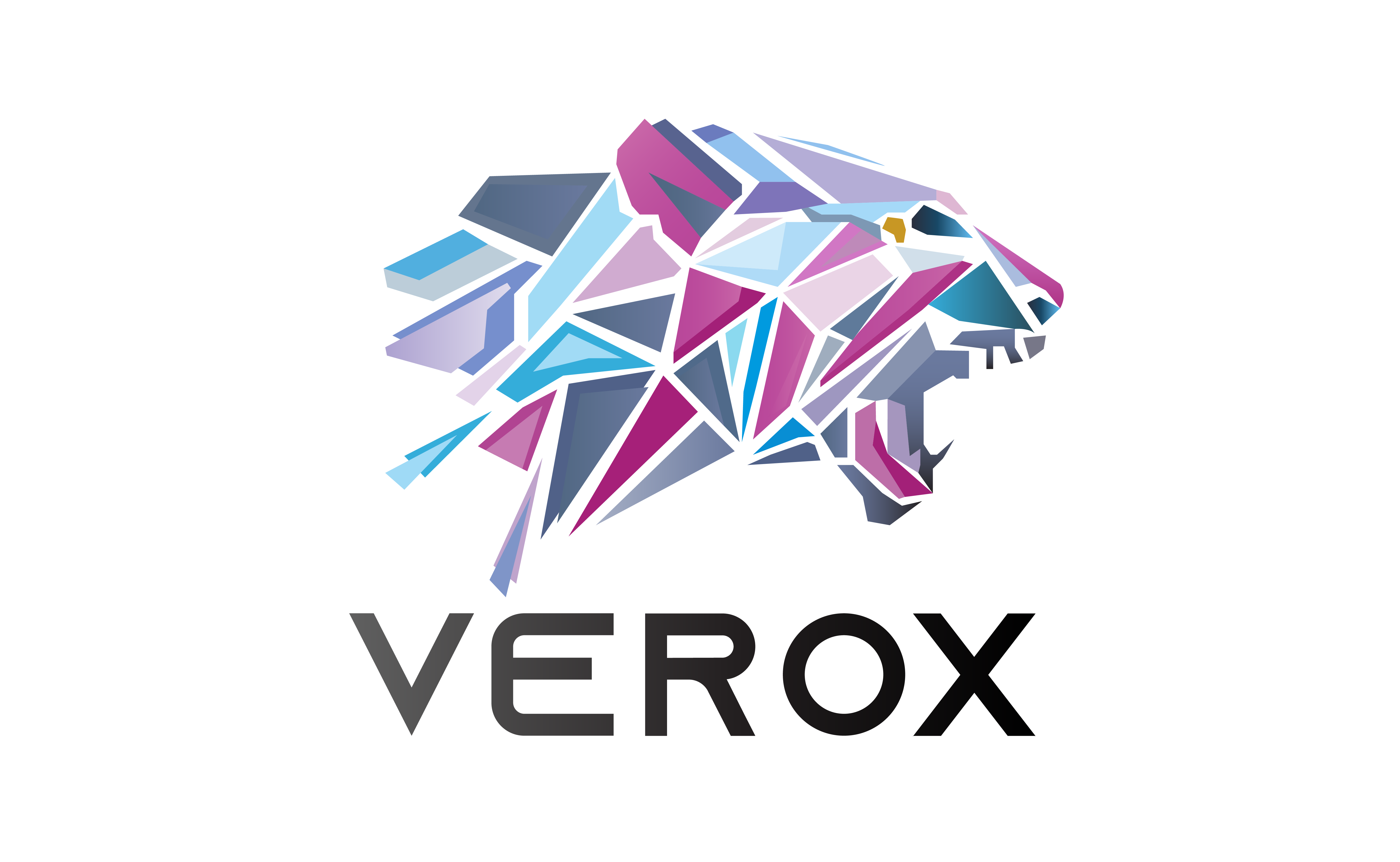 VEROX ico review & rating